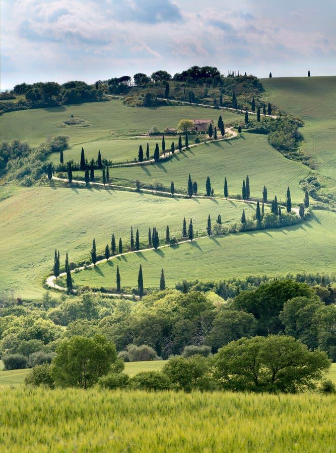 Buktig väg i Tuscany arkivfoton