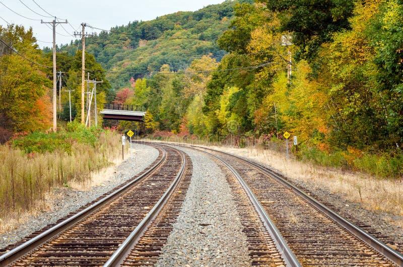 Buktiga järnvägsspår till och med en skog royaltyfri fotografi