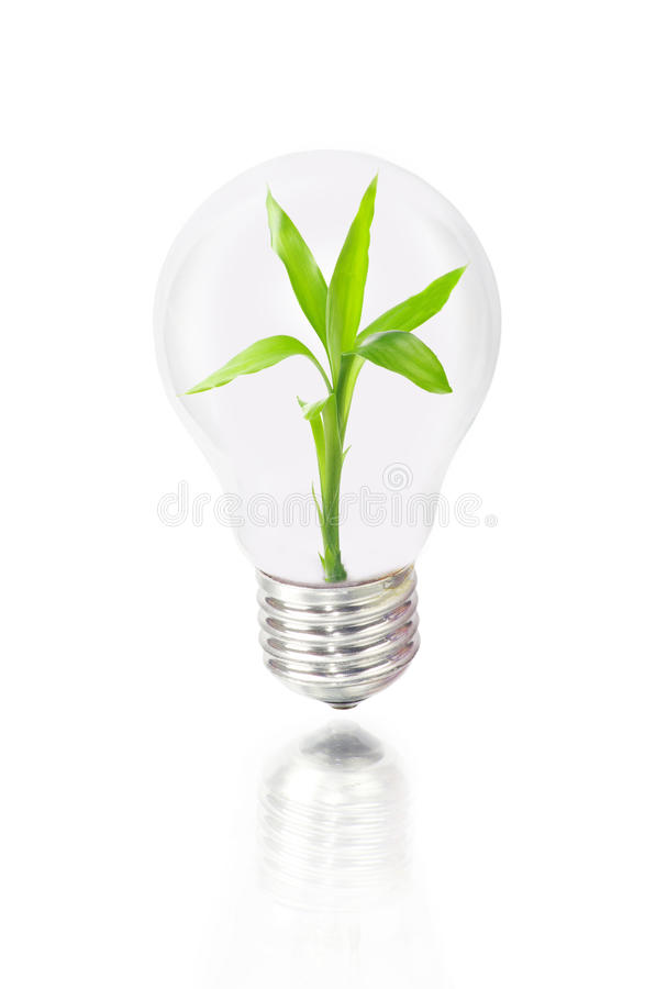 Download Bulb stock image. Image of power, background, album, equipment - 25647819