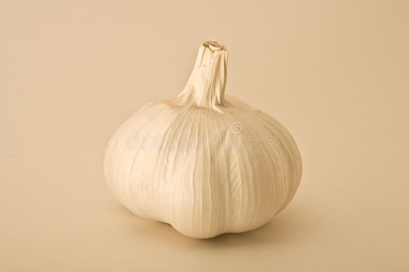 Download Bulb of Garlic stock image. Image of aromatic, spice - 10839343
