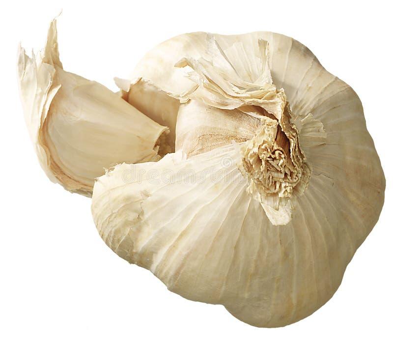 Download Bulb Of Garlic Royalty Free Stock Image - Image: 21348466