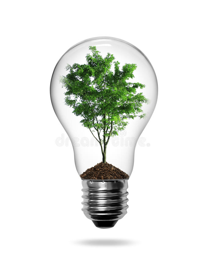 Bulb light with green tree. Inside isolated on white background royalty free illustration