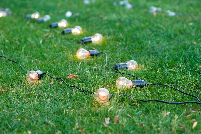 Bulbi decorazione di orti in erba fotografie stock