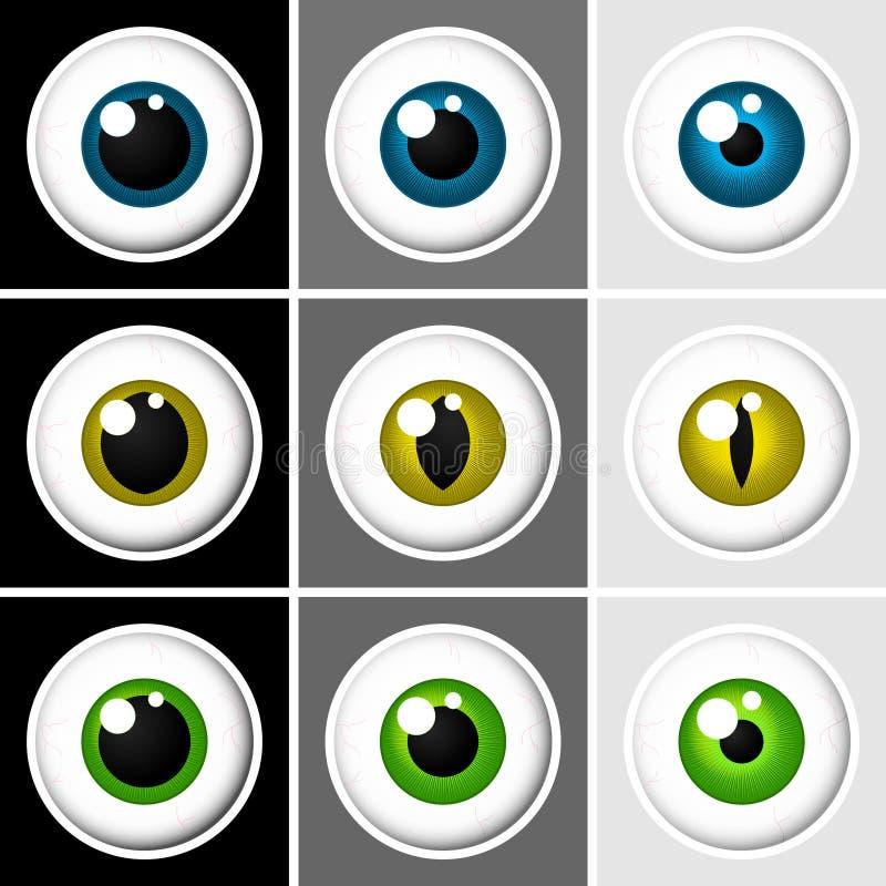 Bulbi oculari umani ed animali illustrazione di stock