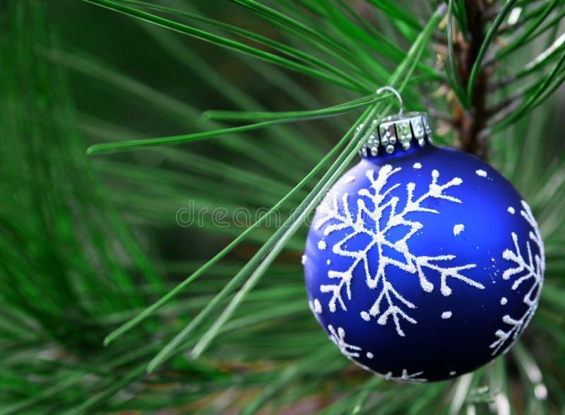 Bulbo azul de la Navidad en árbol imagenes de archivo