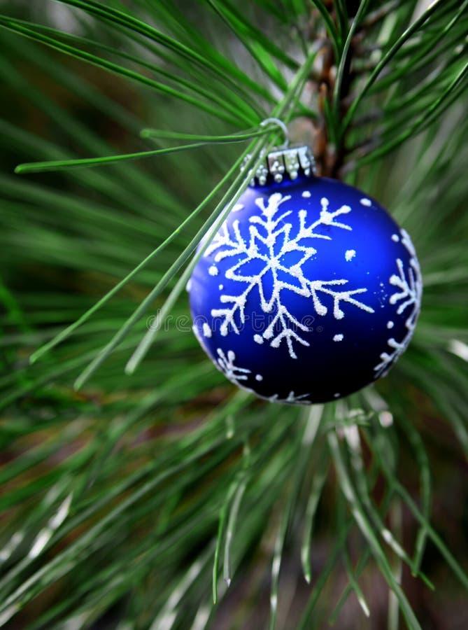 Bulbo azul de la Navidad en árbol foto de archivo libre de regalías