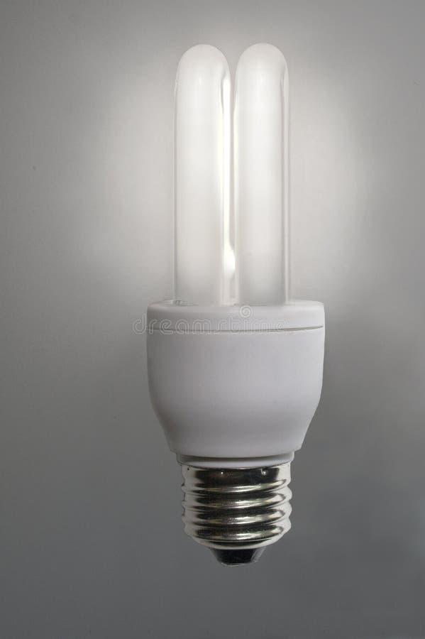 Bulbo da economia de energia fotografia de stock royalty free