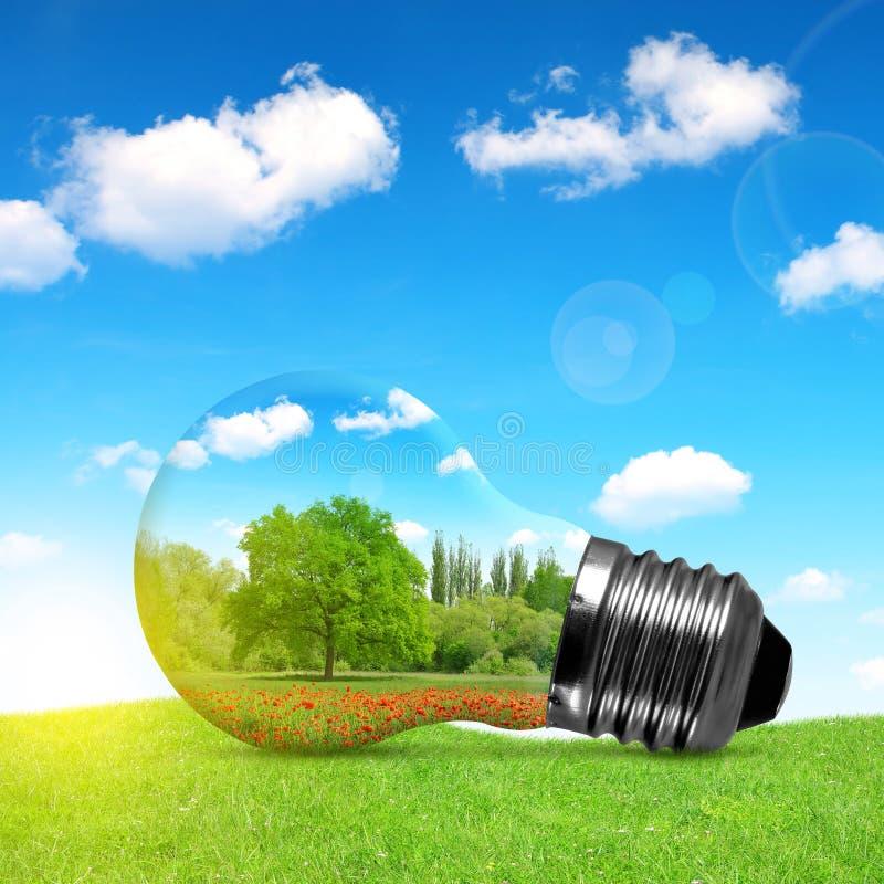 Bulbo de Eco en hierba stock de ilustración