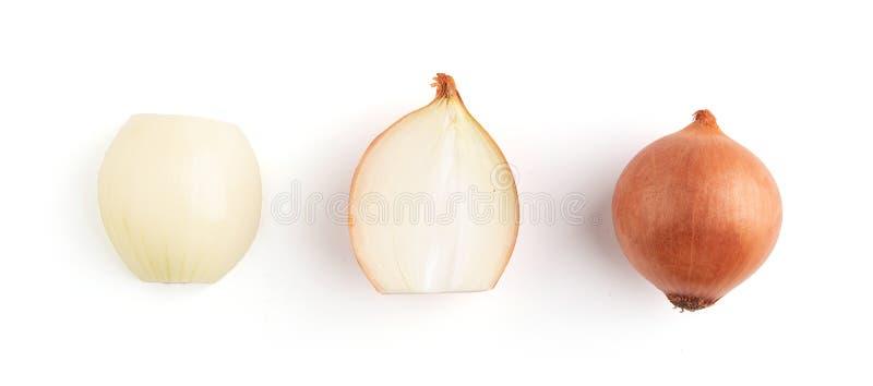 Bulbo de la cebolla aislado Rebanada de la cebolla en el fondo blanco imagen de archivo