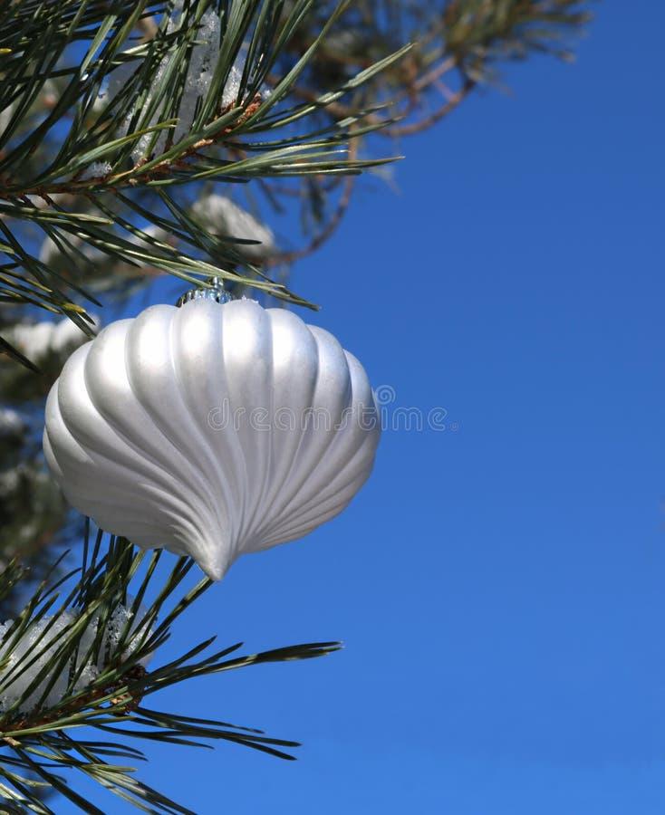 Bulbo de la Navidad blanca en árbol al aire libre real contra el cielo azul brillante imagen de archivo libre de regalías
