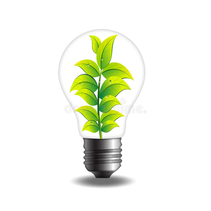 Bulbo de la planta verde ilustración del vector