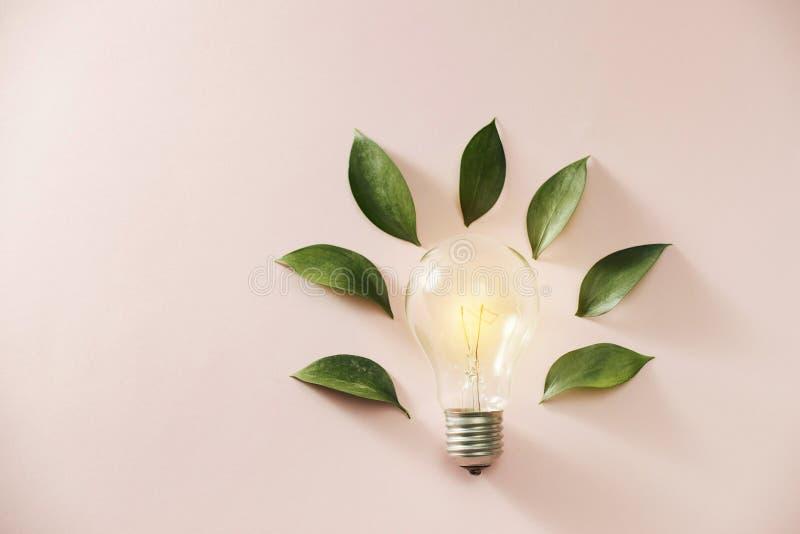 Bulbo del concepto de la energ?a del verde de Eco, hojas de la bombilla en fondo rosado fotos de archivo