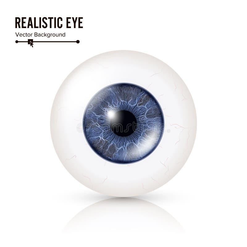 Bulbo oculare umano realistico dettaglio fotorealistico lucido dell'occhio 3d con ombra e la riflessione Su fondo bianco royalty illustrazione gratis