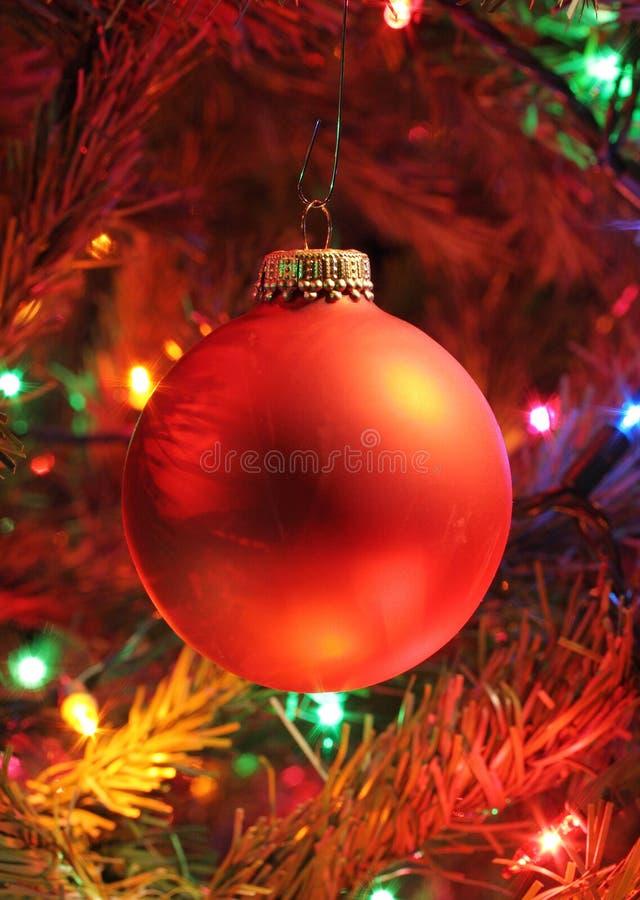 Bulbo vermelho da árvore de Natal fotografia de stock royalty free