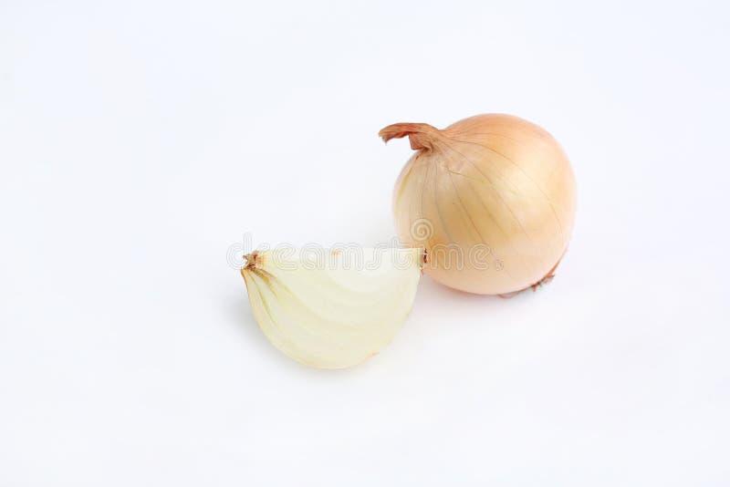 Bulbos frescos de la cebolla aislados en el fondo blanco fotografía de archivo libre de regalías