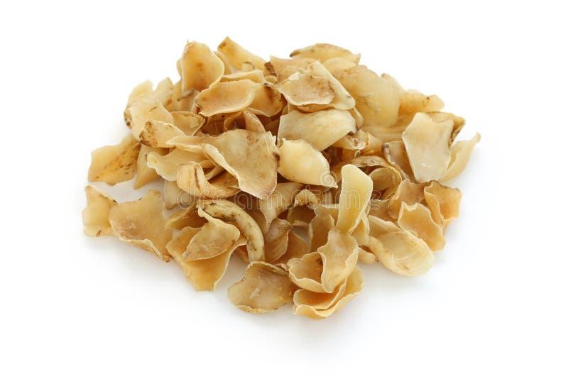 Bulbos secados do lírio, médico erval do chinês tradicional imagem de stock royalty free