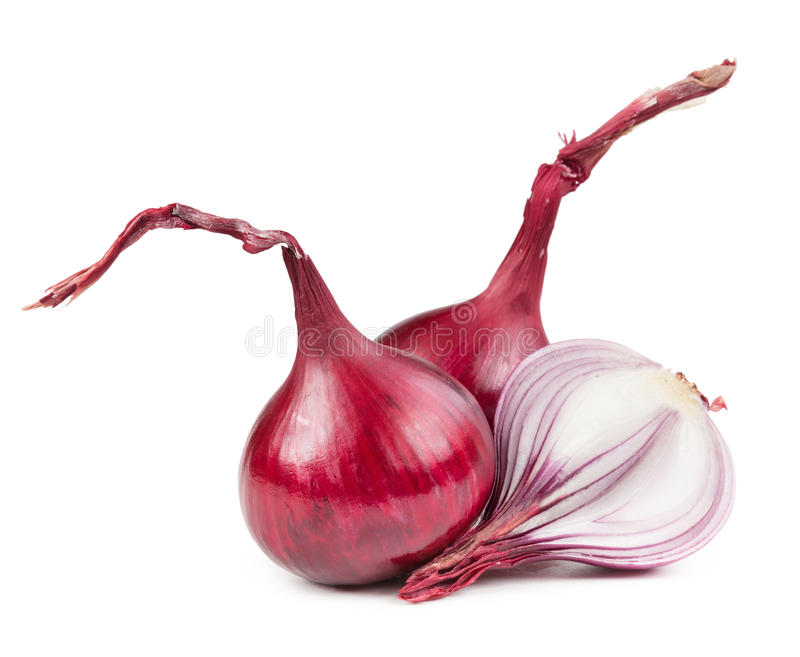 Bulbos vegetais da cebola isolados no branco imagem de stock