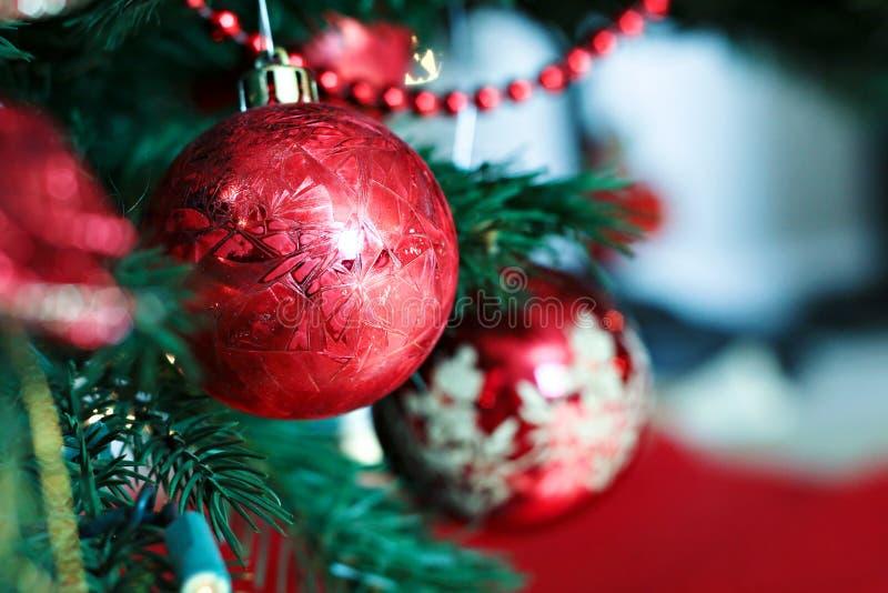 Bulbos vermelhos do Natal fotografia de stock royalty free