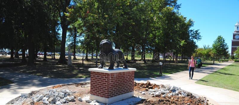 Buldog maskotki statua przy Zrzeszeniowym uniwersytetem w Jackson, Tennessee zdjęcie stock