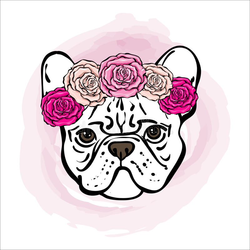 Buldogue francês com as flores cor-de-rosa brilhantes em uma cabeça ilustração royalty free