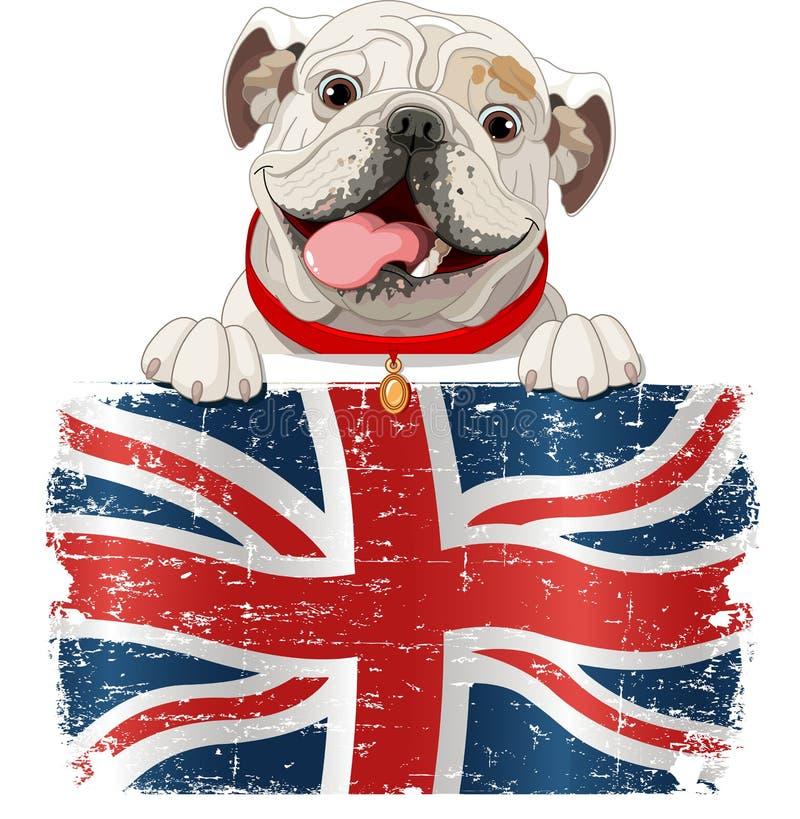 Buldogue inglês ilustração stock
