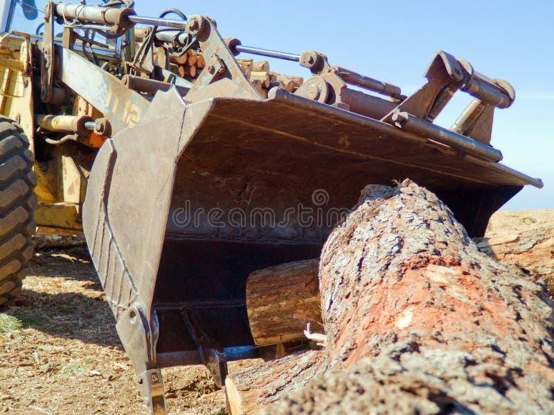 Buldoser. Picking pine wooden log stock images