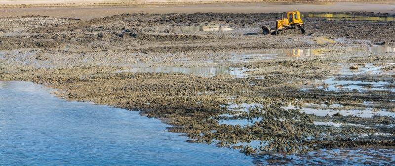 Buldozer amarelo que faz serviços da limpeza e de manutenção do lago fotografia de stock royalty free