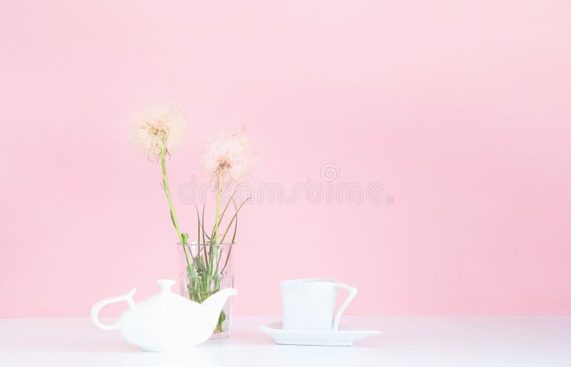 Bule e copo brancos da porcelana no fundo cor-de-rosa com dentes-de-leão brancos Conceito para o fundo festivo fotos de stock