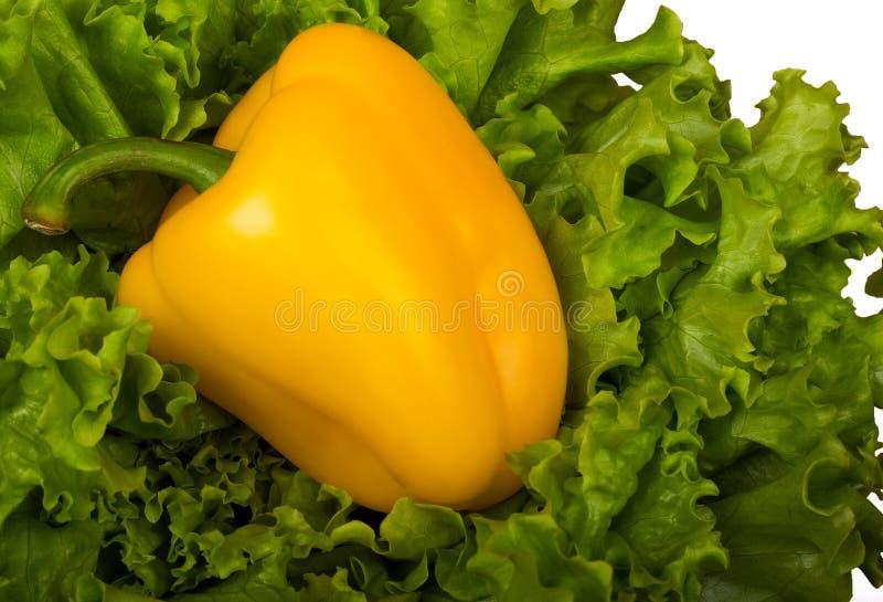 Bulgaarse gele peper op groene bladsla. stock afbeeldingen