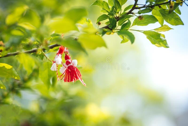 Bulgaarse Martenitsa op een boomtak Nationaal Bulgaars Traditioneel vakantiesymbool stock fotografie