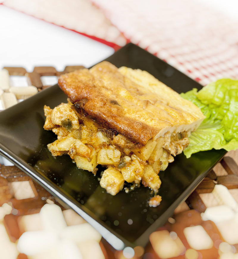 Free Bulgarian Mousaka Stock Photo - 19105110