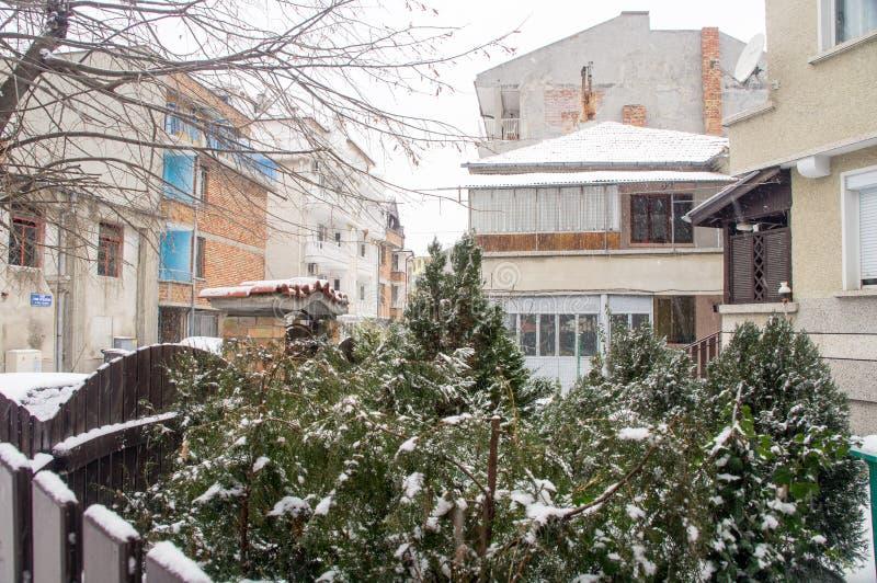 Bulgarian trees in the snow, Pomorie, Bulgaria royalty free stock photos