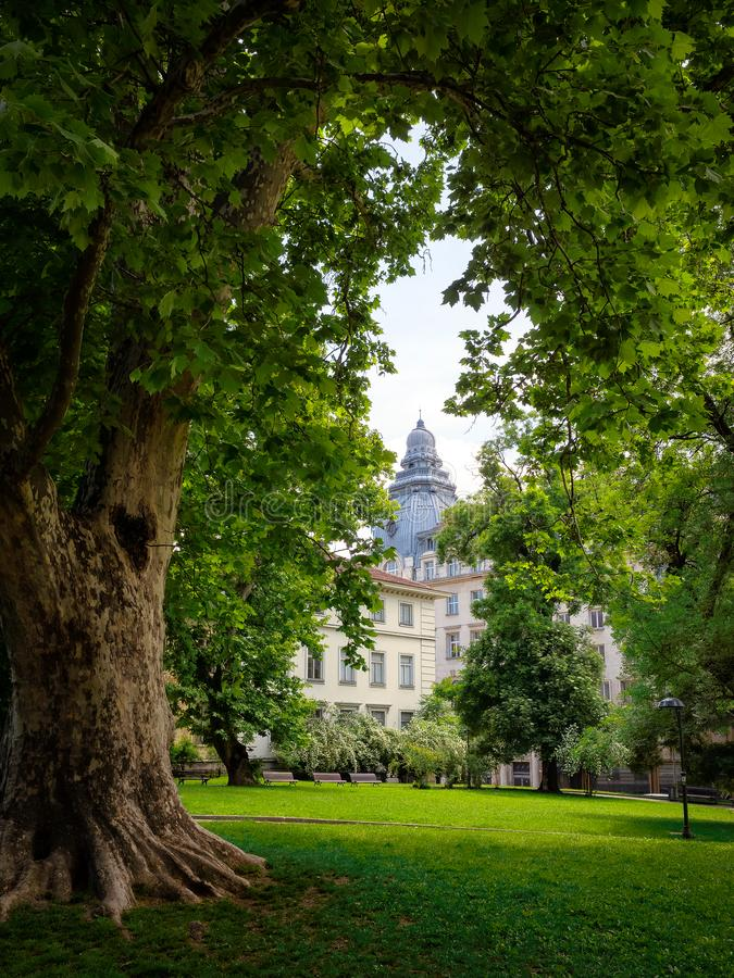 Bulgarije, Sofia, Universitair die Park tussen bomen wordt ontworpen royalty-vrije stock afbeelding