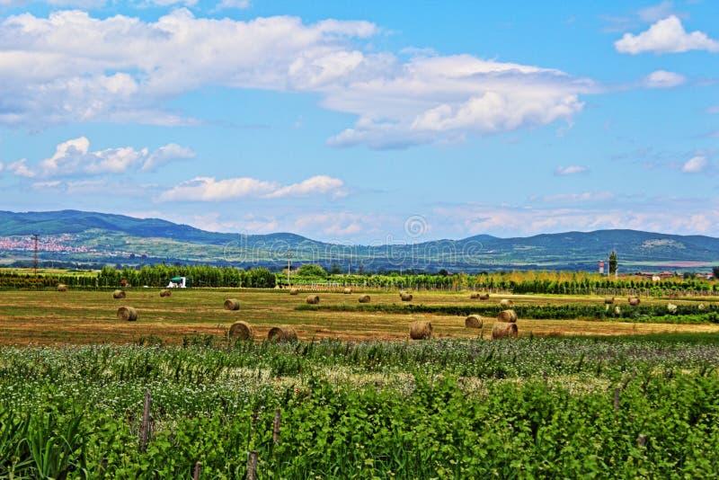 Bulgariskt sommarlandskap arkivbilder