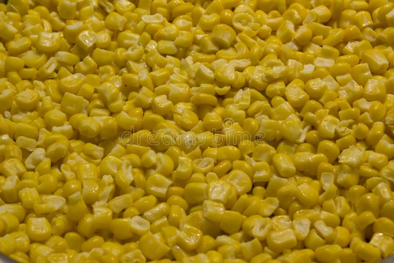 Bulk of boiled yellow corn grains texture stock photo