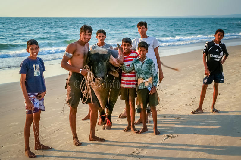 Bull και αγόρια στοκ φωτογραφία με δικαίωμα ελεύθερης χρήσης