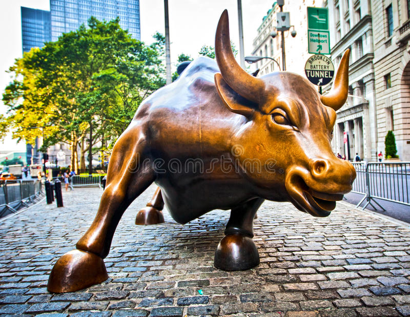 Bull de carregamento fotografia de stock royalty free