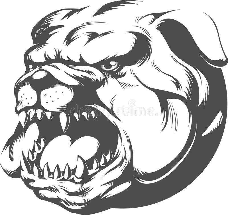 Angry dog face drawing
