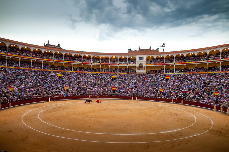 Bull fight in Madrid stock photos