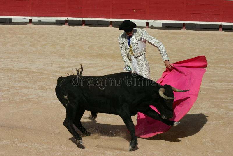 Bull-Kampf Frankreich lizenzfreie stockfotografie