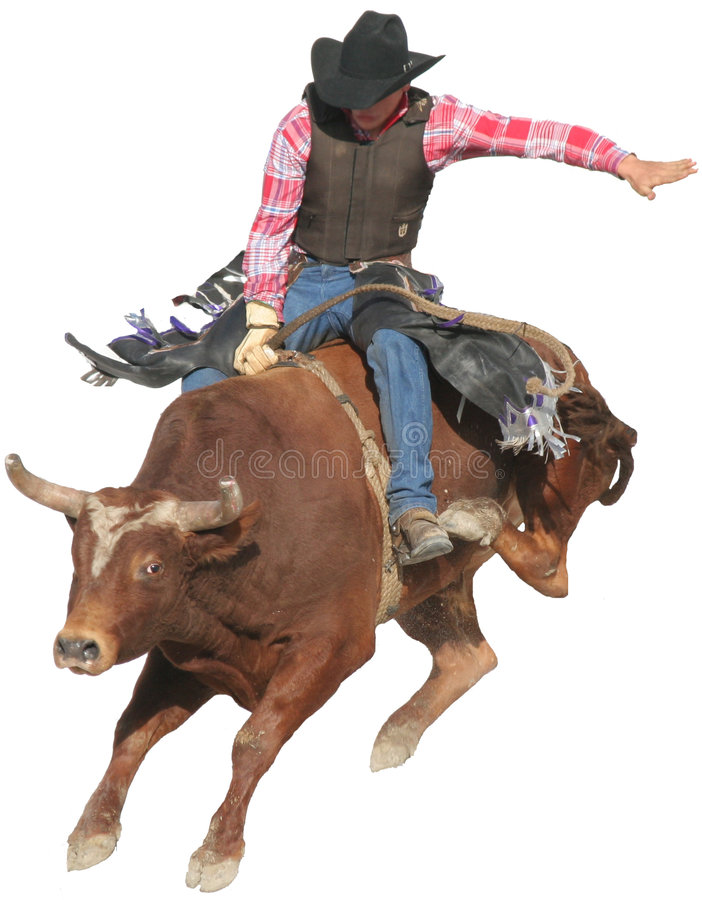 Bull-Mitfahrer lizenzfreie stockfotografie