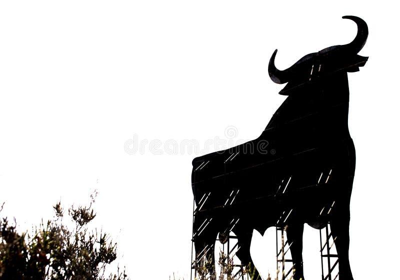 Bull osborne Toro de osborne στοκ εικόνα