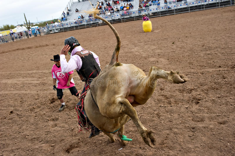 Download Bull riding editorial image. Image of competition, dutchman - 13267855
