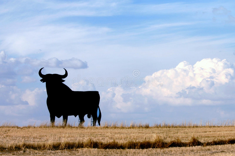 Bull of Spain. A typical symbol of Spain, silhouette
