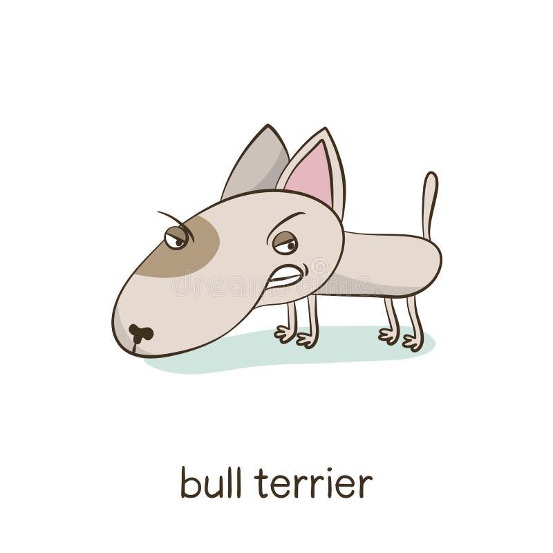 Bull terrier Hondkarakter op wit stock fotografie