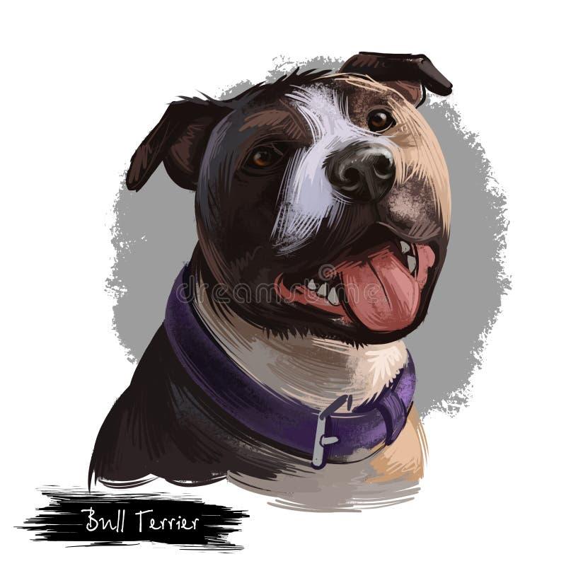 Bull terrier-hondras op witte achtergrond digitale kunstillustratie die wordt geïsoleerd De hoofdhond van de eivorm in leerkraag, stock illustratie