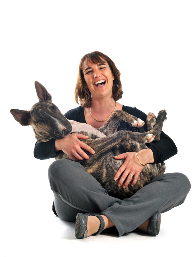 Bull-Terrier und Frau stockbild
