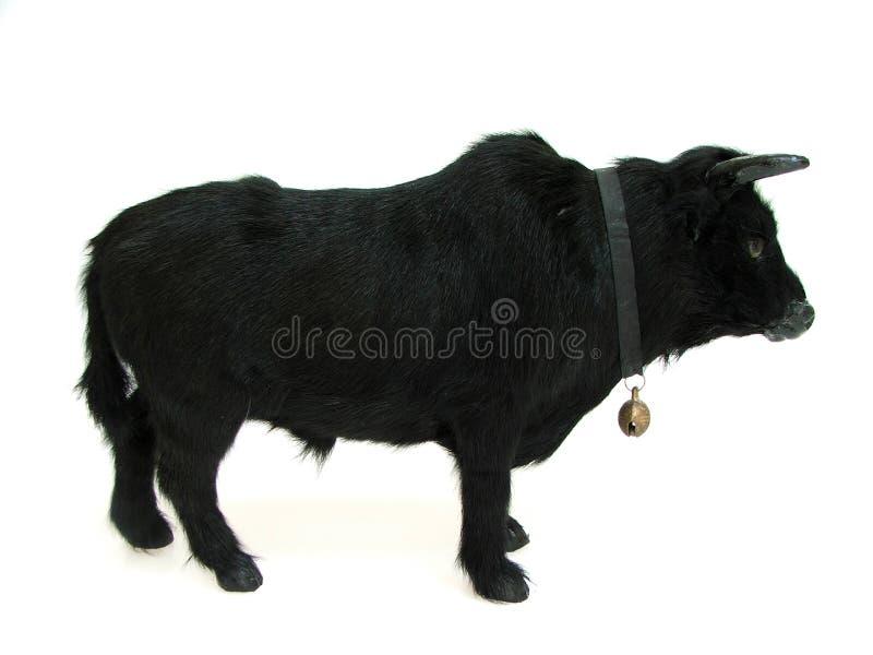 Bull05 Royalty Free Stock Photos