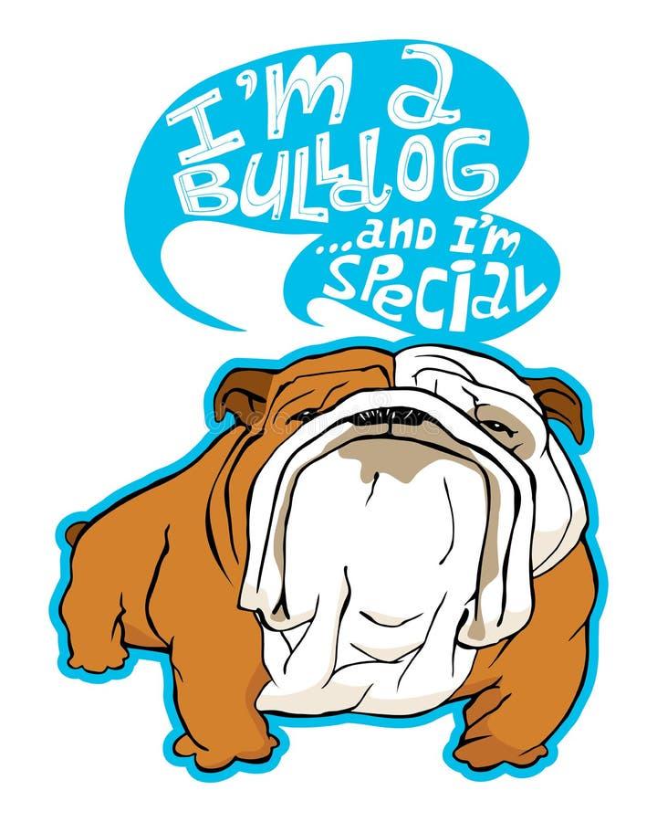 bulldog foto de stock