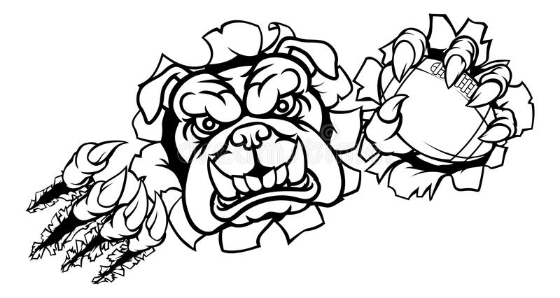 Bulldog American Football Sports Mascot. A bulldog angry animal sports mascot holding an American football ball and breaking through the background with its royalty free illustration